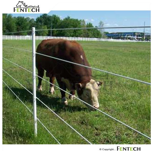 Электропастух для овец, коров и коз своими руками в домашних условиях