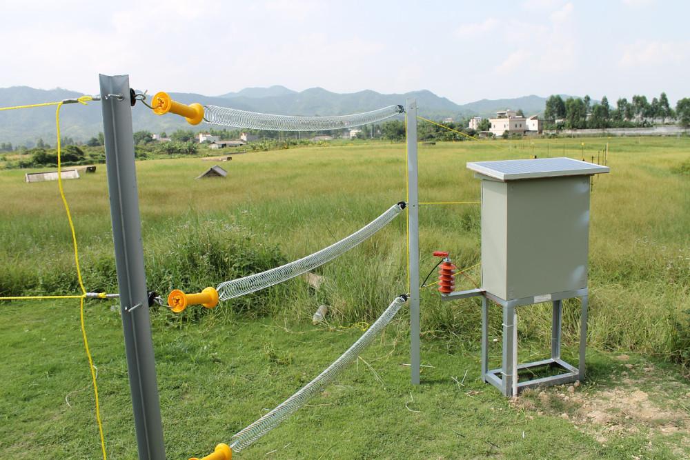 Преимущества и недостатки использования электроизгороди для выпаса овец
