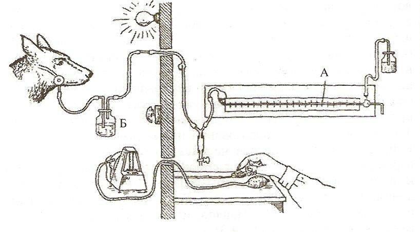 Формирование поверхностных слоев: плакирование, наплавка, газотермическое напыление
