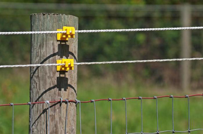 Электропастух для коров: как выбрать и поставить? схема для изготовления пастуха и принцип его работы. как правильно его применять?